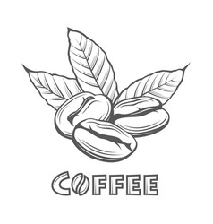 coffee branch image vector image vector image