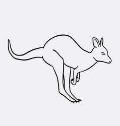 Kangaroo animal sketch vector