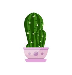 Cactus house plant indoor flower in pot elegant vector