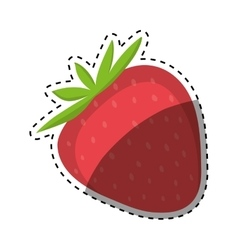 Strawberry fresh fruit vector
