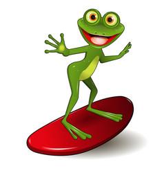 Frog surfer vector
