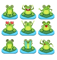 Frogs sitting on leaf characters set vector