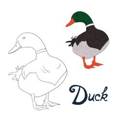 Educational game coloring book duck bird vector