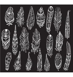 Set of white feathers on black background vector