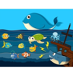 Ocean scene with sea animals vector