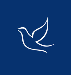 dove the symbol of the holy spirit vector image
