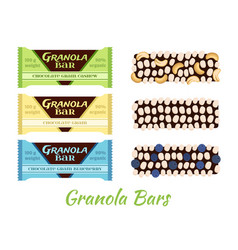 Granola bars chocolate with grain berries nuts vector