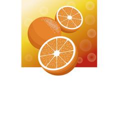 Brochure orange fruit template vector