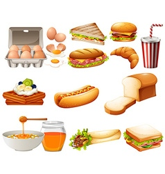 Food set with different kind of meals vector image vector image