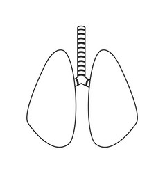 Lungs organ icon vector