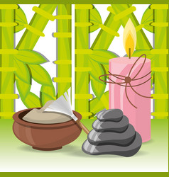Spa natural products with towel and stones vector
