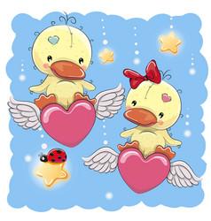 cute lovers ducks vector image