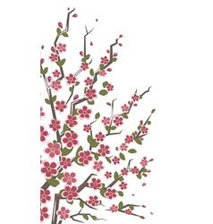 Sakura branch floral vector