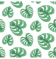 Monstera tropic plant leaves seamless pattern vector