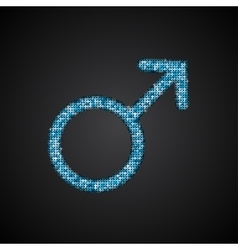 Gender Men Blue Sequins Icon vector image vector image