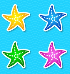 Starfish labels vector image