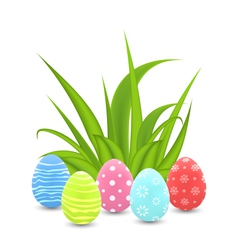 Traditional colorful ornamental eggs with grass vector