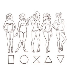 Sketch set of isolated female body shape types vector