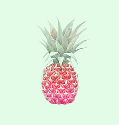 watercolor pineapple fruit vector image