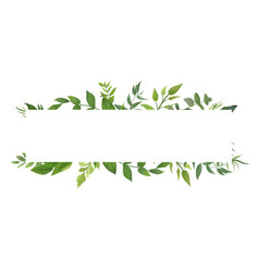 Card design with green fern leaves herbs plants vector