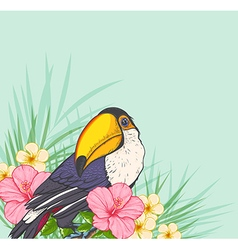 Toucan and flowers vector