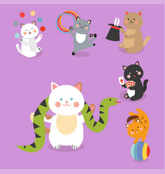 circus cats cheerful for kids vector image vector image