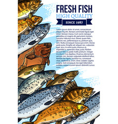 fresh fish catch poster for market vector image