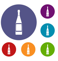 Glass bottle icons set vector