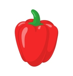 Red paprika pepper vector