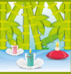 Spa decoration candles with flowers and bamboo vector