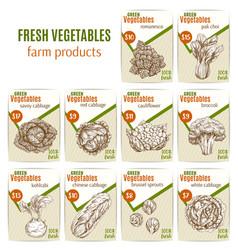 Vegetables or veggies sketch price menu vector