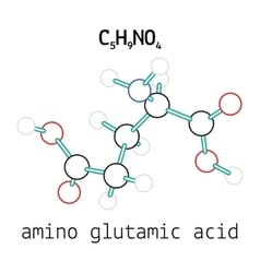C5h9no4 glutamic amino acid molecule vector