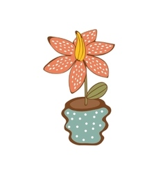 Beautiful house plant in vase vector