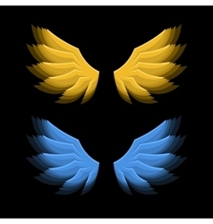 Fiery golden and blue wings on black background vector