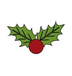 Isolated leaves with berry of christmas season vector