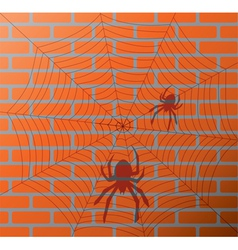 spiders and web on a brick wall vector image vector image