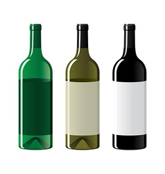 Set of vine bottles vector