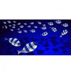 shoal of fish vector image