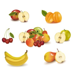 Big group of sweet fruit vector