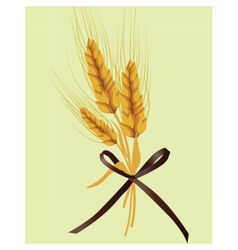 Wheat ears design for labels or decoration vector