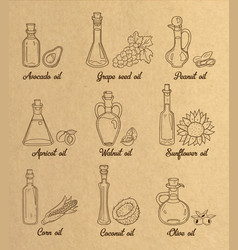 9 brown cooking oils in vintage sepia style vector