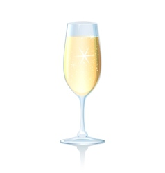 Flute of sparkling chilled champagne vector