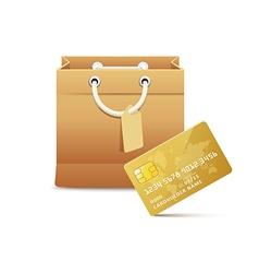 CardboardBagCreditCard vector image