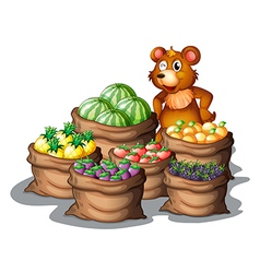 A bear with the newly harvested fruits vector image vector image