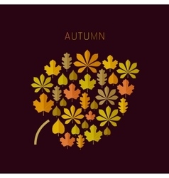 Autumn background with leaves icons vector image vector image