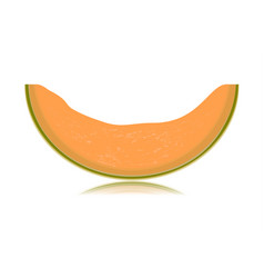 sliced melon isolated on white background vector image vector image