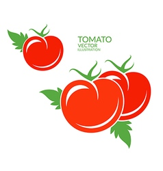 Tomato Red vegetables with leaves vector image vector image