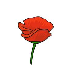 Pop art style poppy sticker vector
