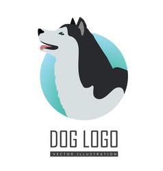 Dog logo husky or alaskan malamute isolated vector