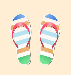 beach slippers vector image